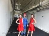 August 2013 - OZ-Workshop   Russia